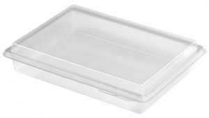 This is a rectangular APET tray. It comes with the lid.